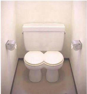 toilet-twins